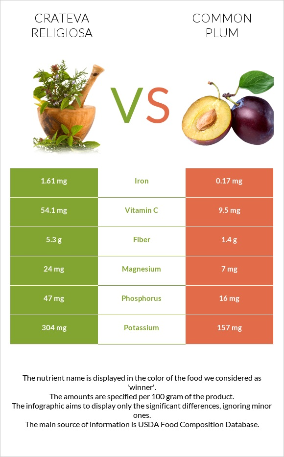 Crateva religiosa vs Common plum infographic
