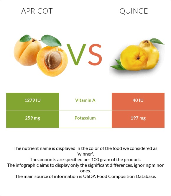 Apricot vs Quince infographic