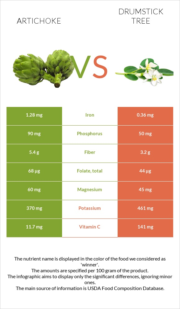 Artichoke vs Drumstick tree infographic