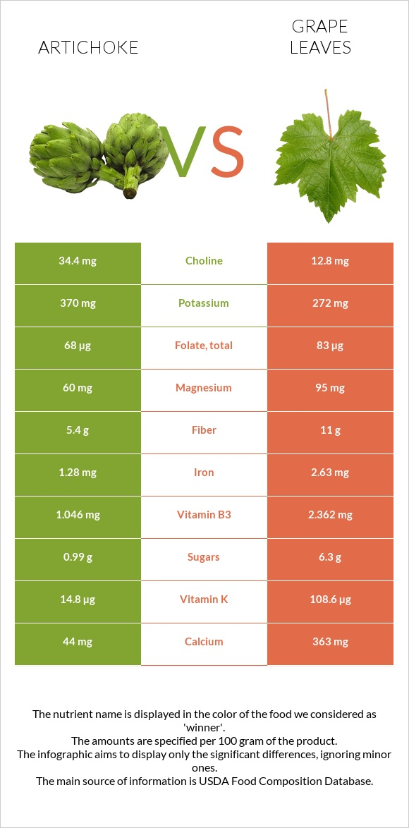 Artichoke vs Grape leaves infographic