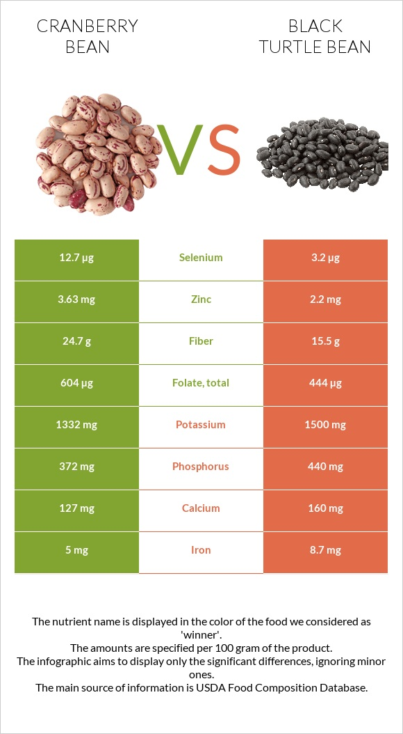 Cranberry bean vs Black turtle bean infographic