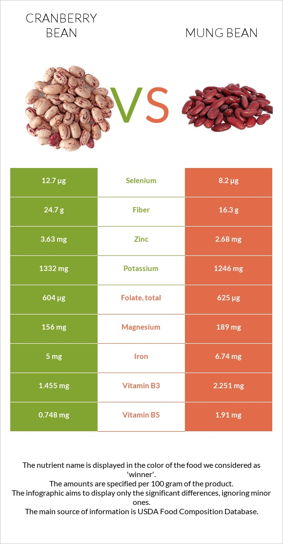 Cranberry bean vs Bean infographic