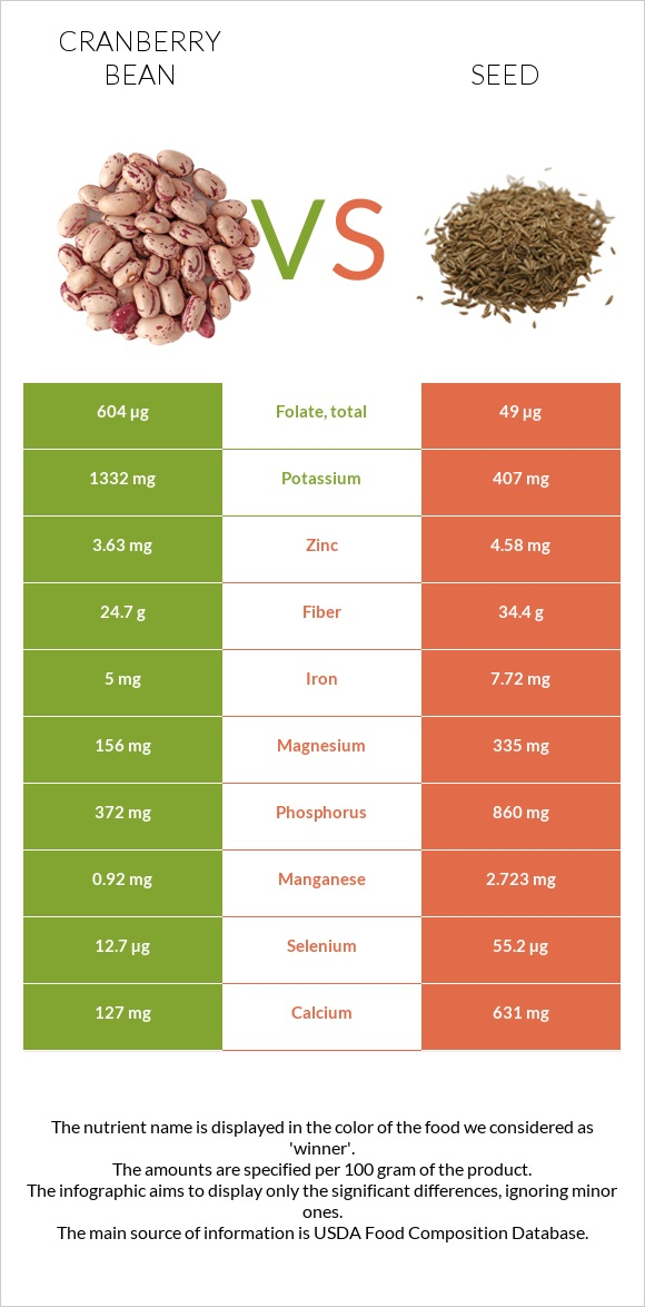 Cranberry bean vs Seed infographic