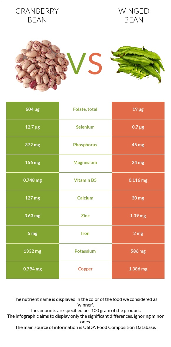 Cranberry bean vs Winged bean infographic