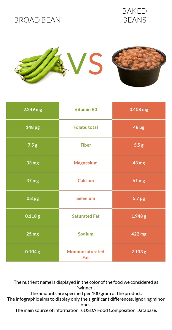 Broad bean vs Baked beans infographic