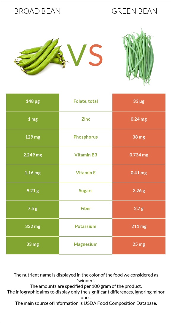 Broad bean vs Green bean infographic