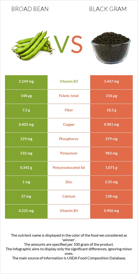 Broad bean vs Black gram infographic