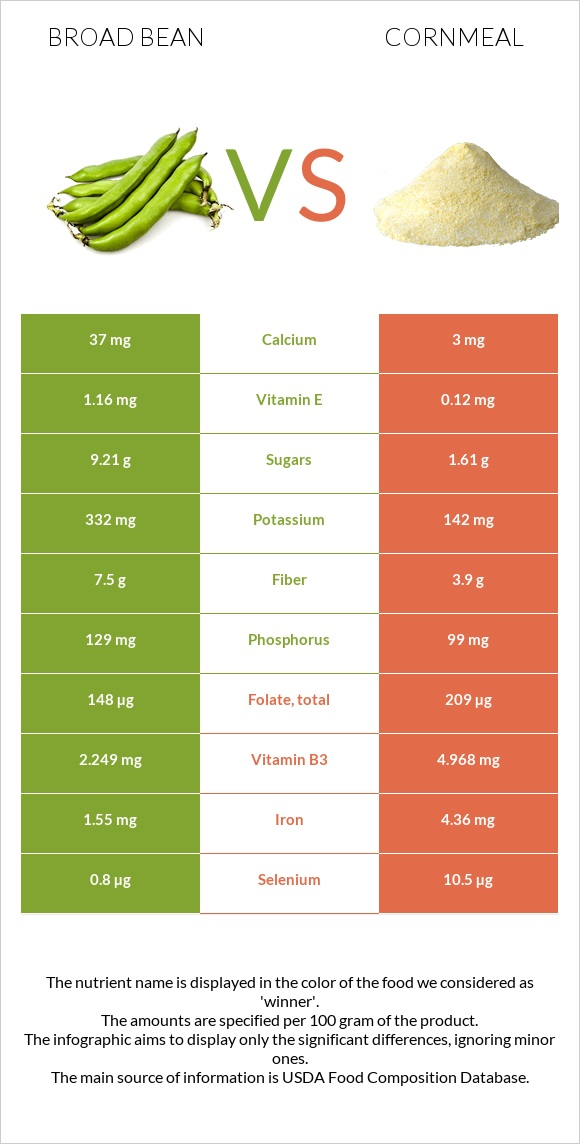 Broad bean vs Cornmeal infographic