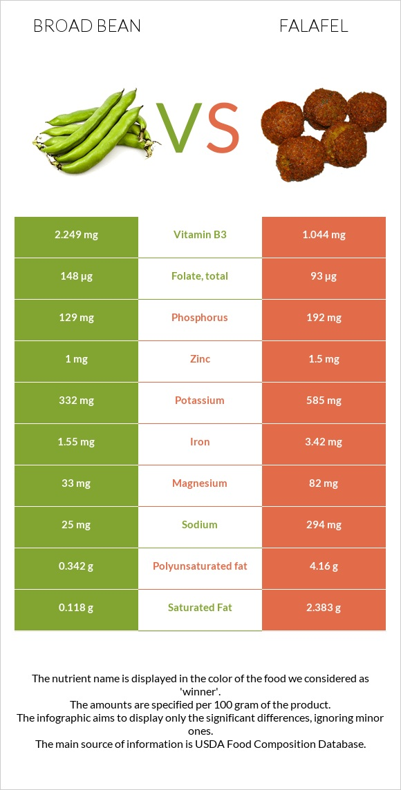 Broad bean vs Falafel infographic