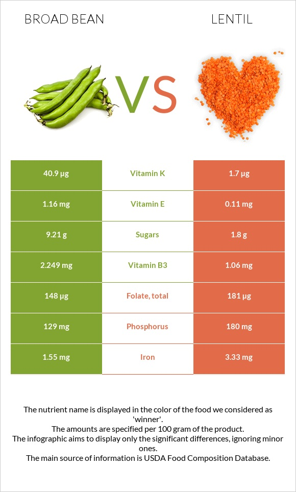 Broad bean vs Lentil infographic