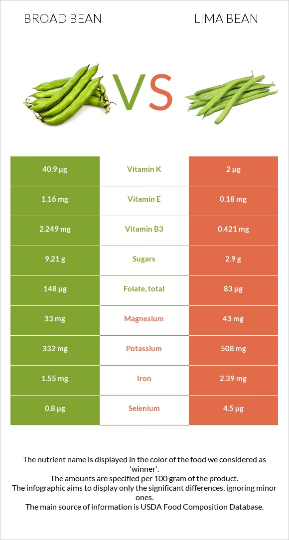 Broad bean vs Lima bean infographic