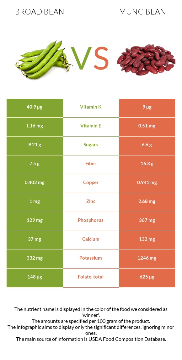 Broad bean vs Bean infographic
