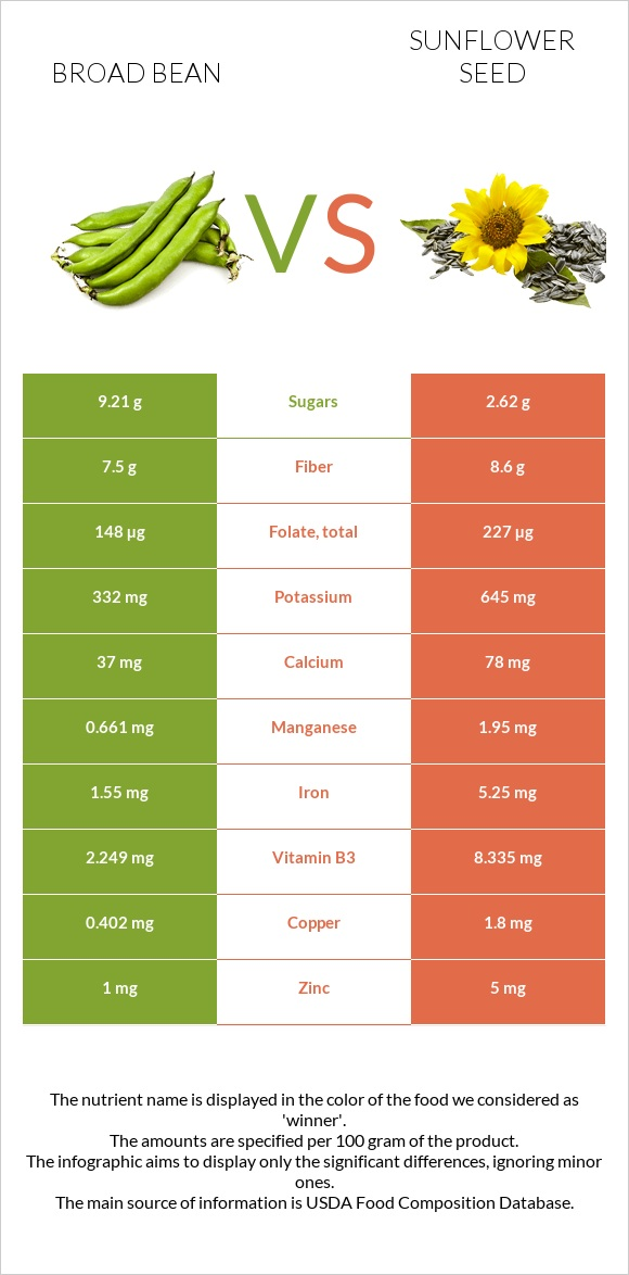 Broad bean vs Sunflower seed infographic