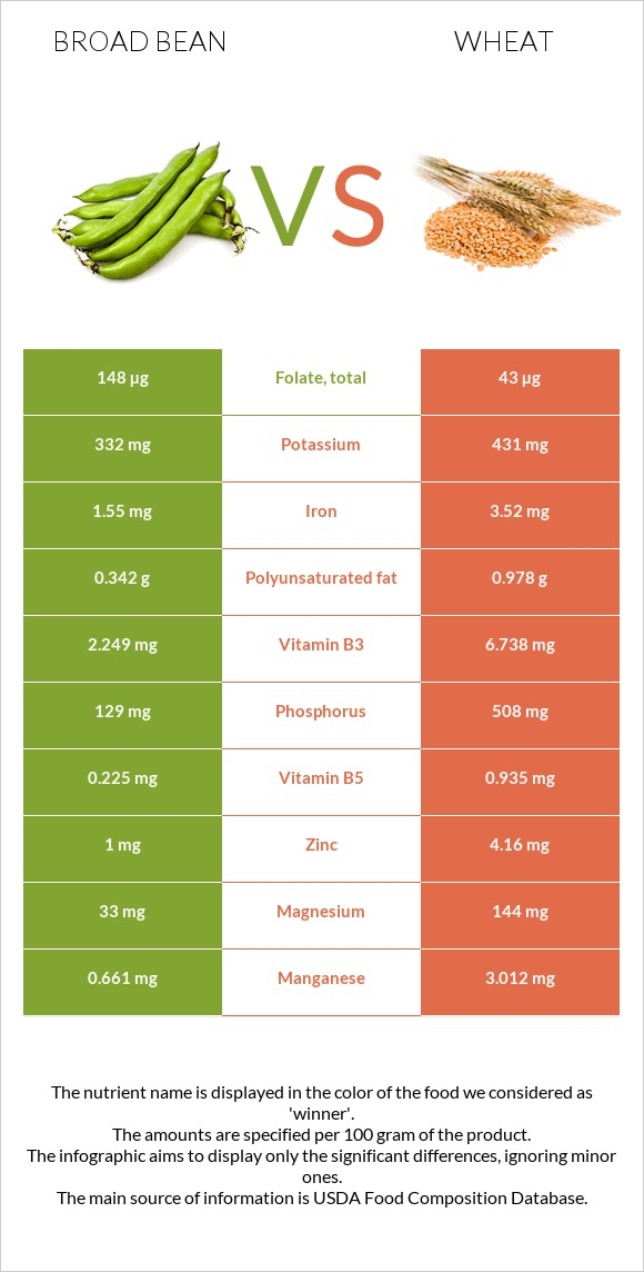 Broad bean vs Wheat infographic