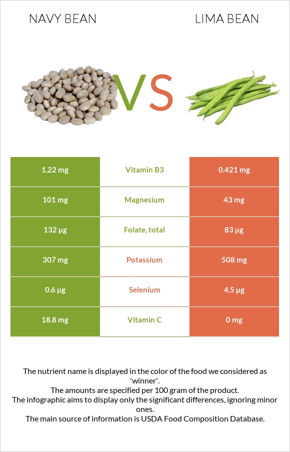 Navy bean vs Lima bean infographic