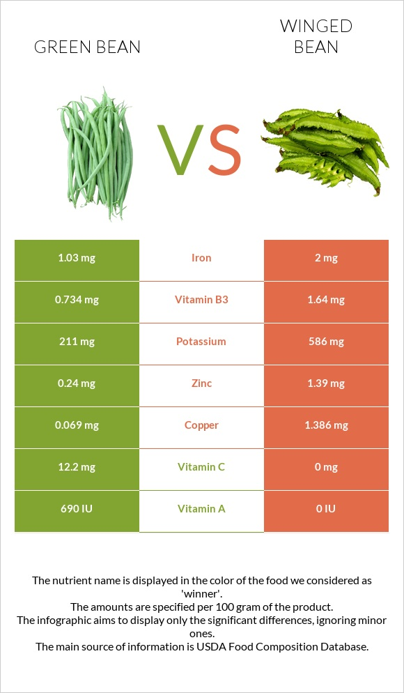 Green bean vs Winged bean infographic