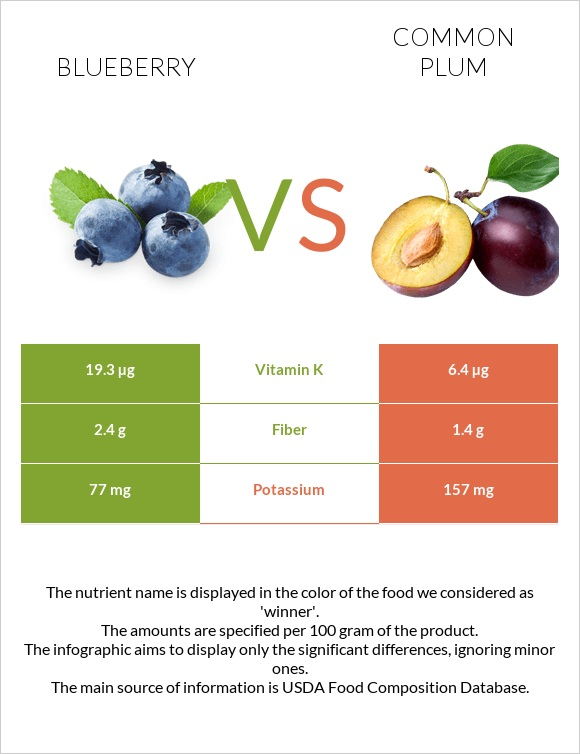 Blueberry vs Common plum infographic