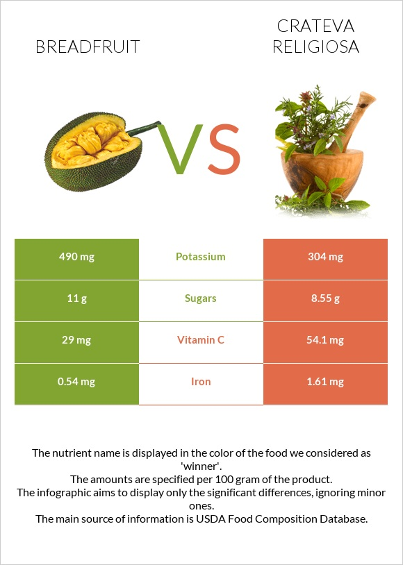 Breadfruit vs Crateva religiosa infographic