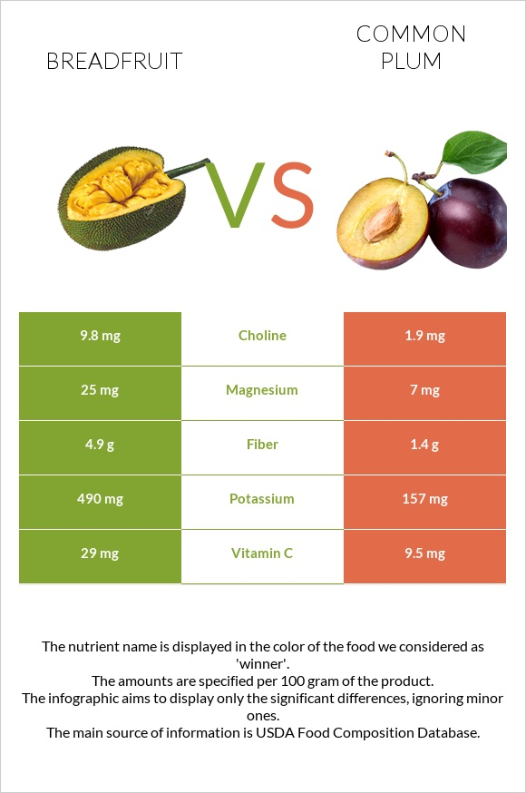 Breadfruit vs Common plum infographic