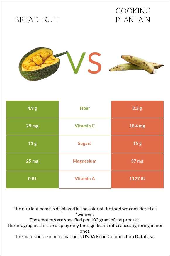 Breadfruit vs Cooking plantain infographic