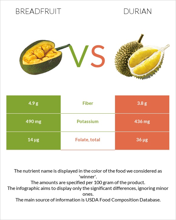 Breadfruit vs Durian infographic