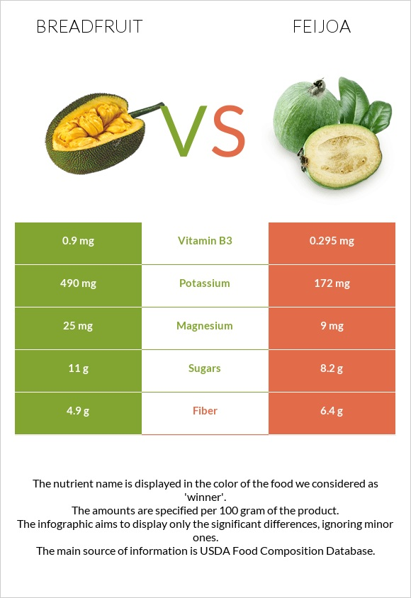 Breadfruit vs Feijoa infographic