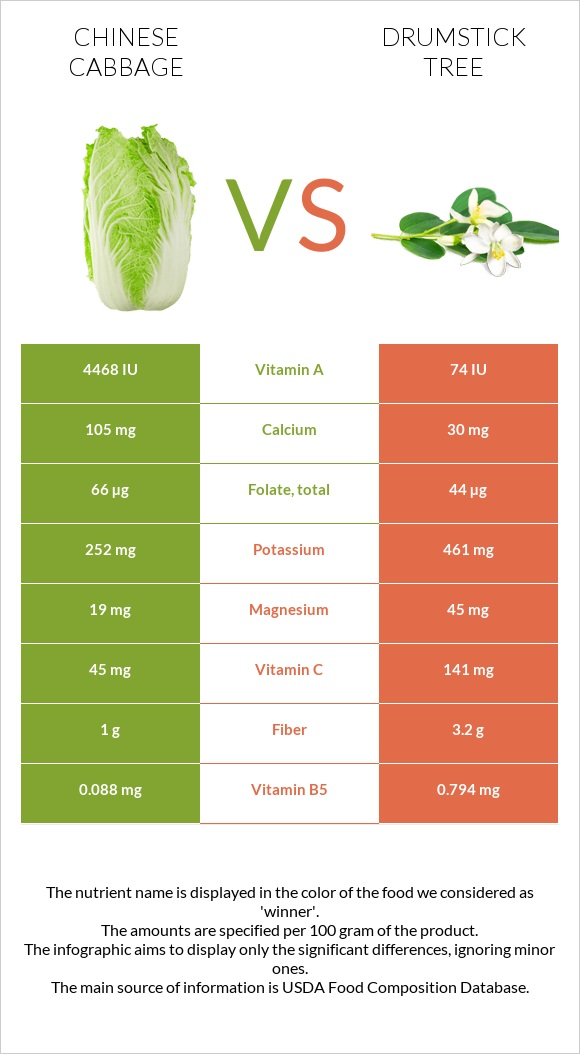Chinese cabbage vs Drumstick tree infographic
