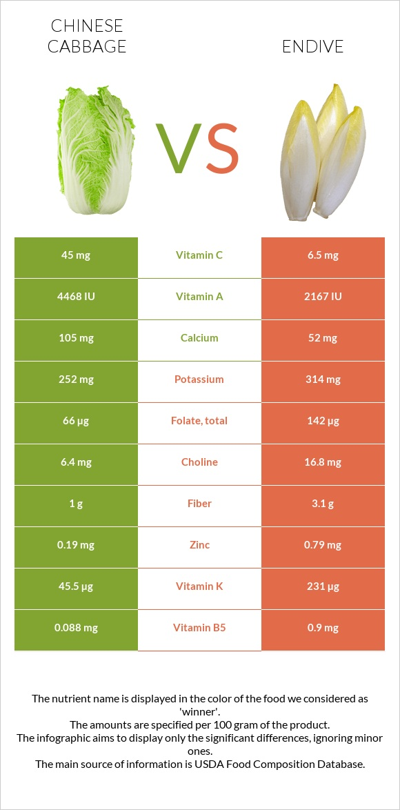 Chinese cabbage vs Endive infographic