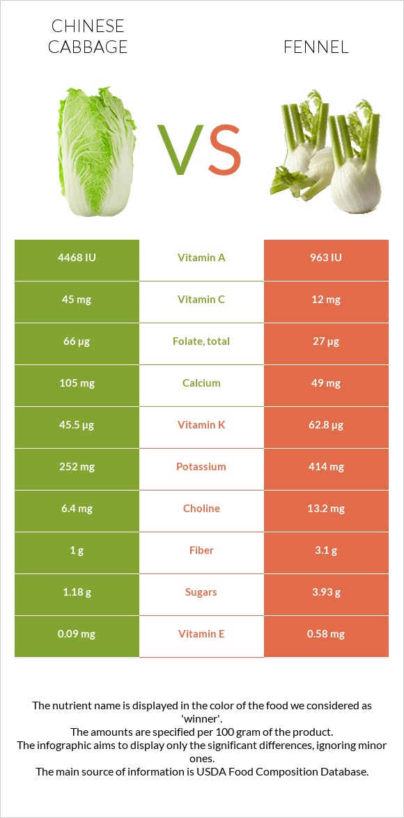 Chinese cabbage vs Fennel infographic