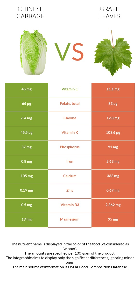 Chinese cabbage vs Grape leaves infographic