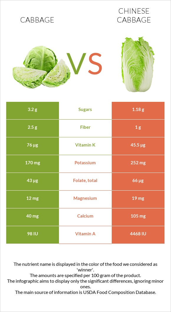 Cabbage vs Chinese cabbage infographic