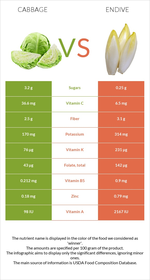 Cabbage vs Endive infographic