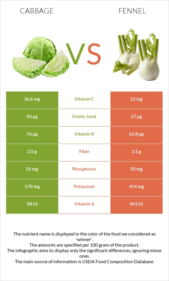 Cabbage vs Fennel infographic