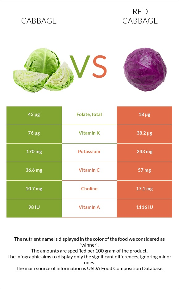 Cabbage vs Red cabbage infographic