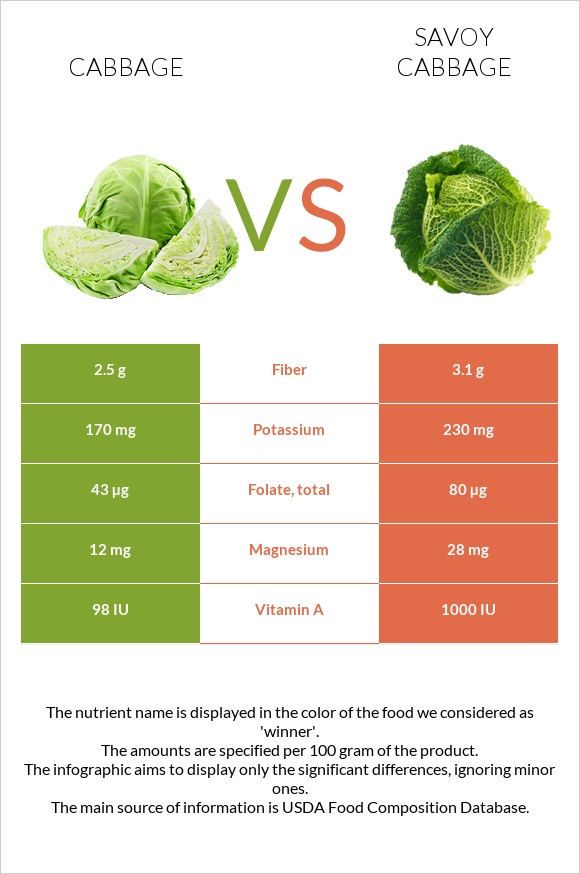Cabbage vs Savoy cabbage infographic