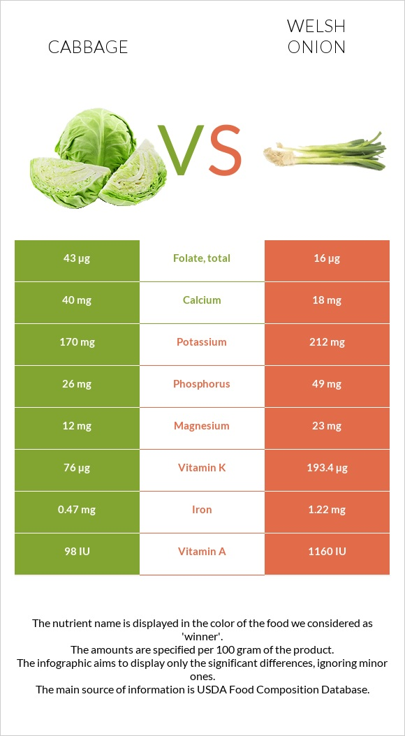 Cabbage vs Welsh onion infographic
