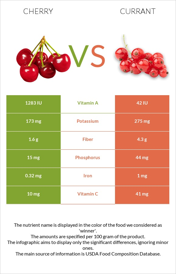Cherry vs Currant infographic