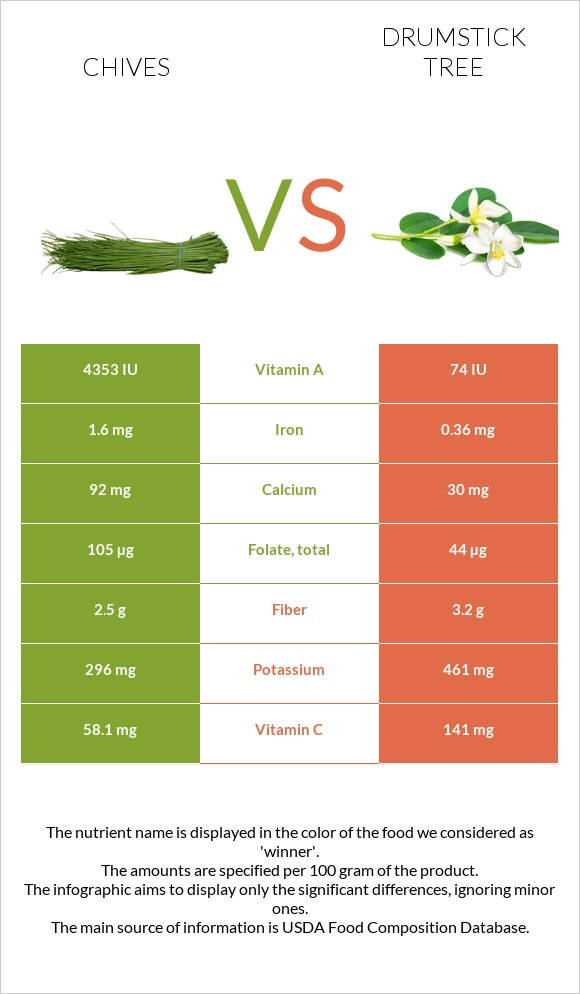 Chives vs Drumstick tree infographic