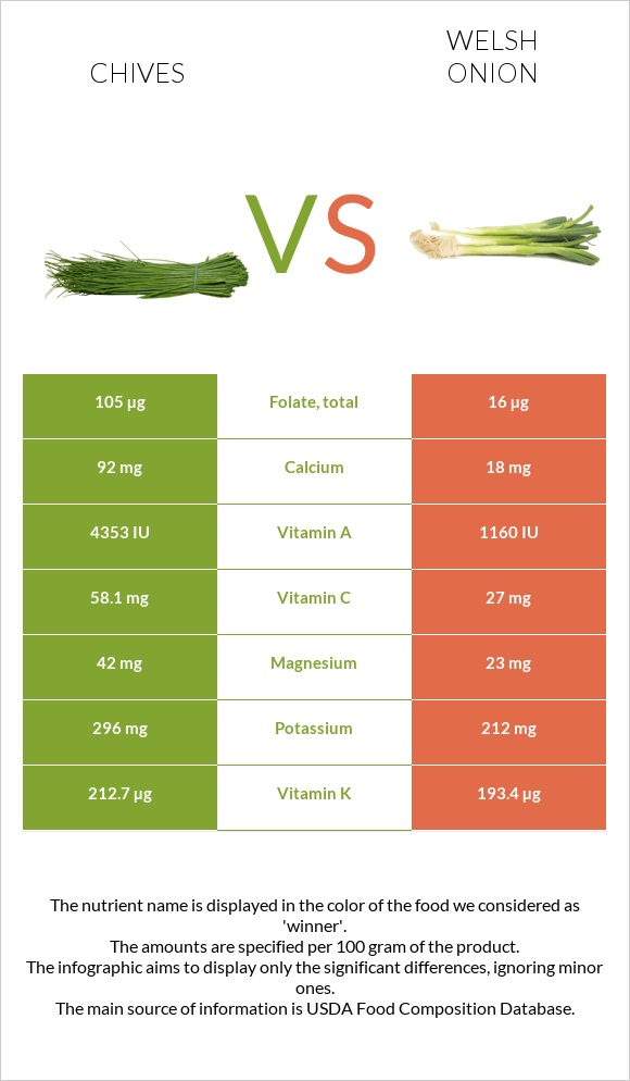 Chives vs Welsh onion infographic