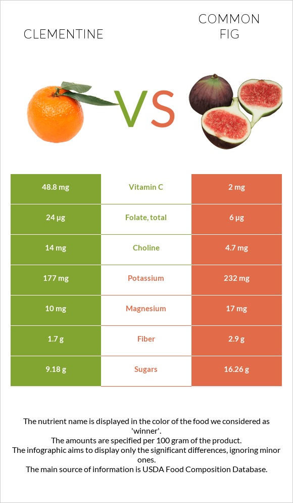 Clementine vs Common fig infographic