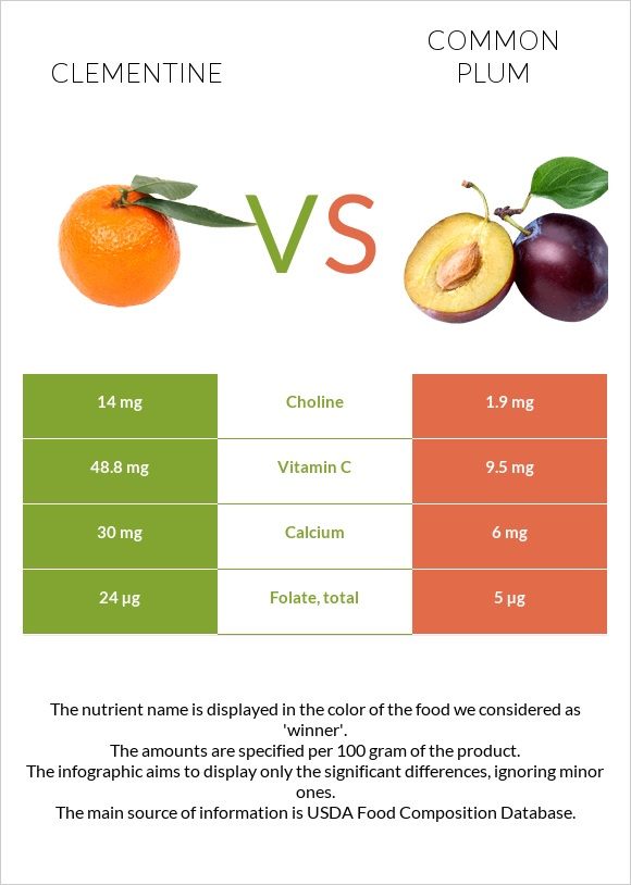 Clementine vs Common plum infographic