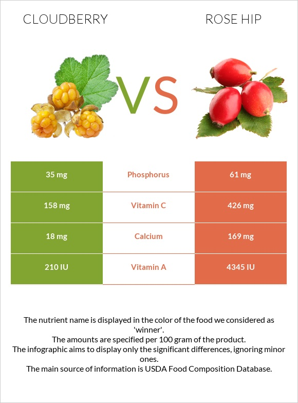 Cloudberry vs Rose hip infographic