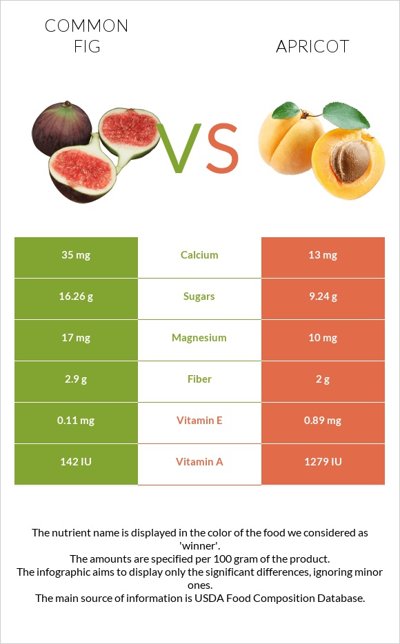 Common fig vs Apricot infographic
