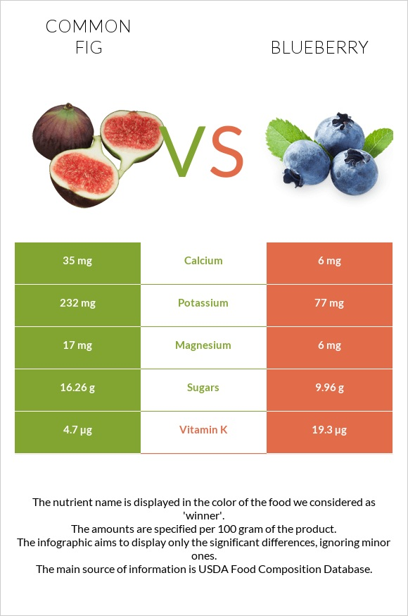 Common fig vs Blueberry infographic