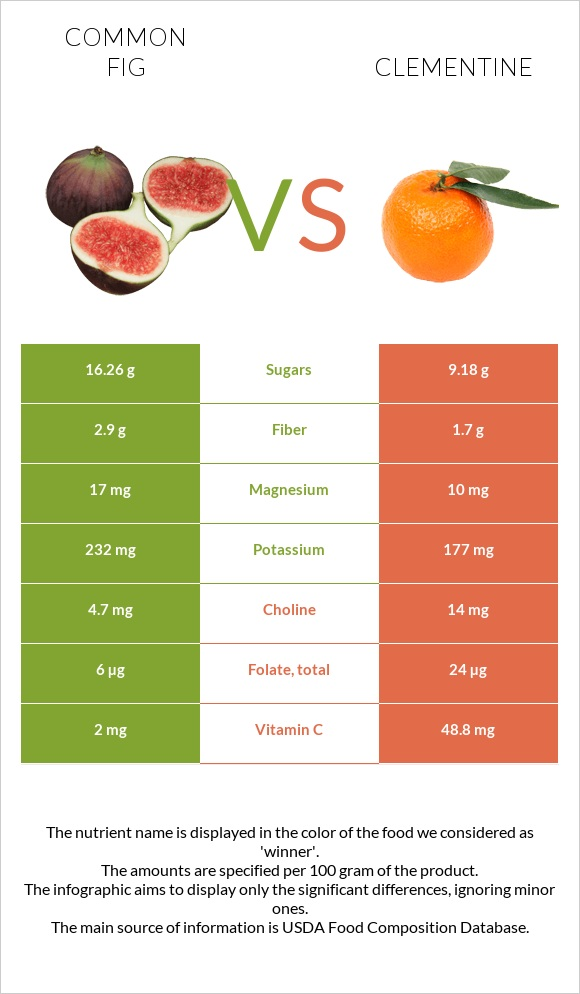 Common fig vs Clementine infographic