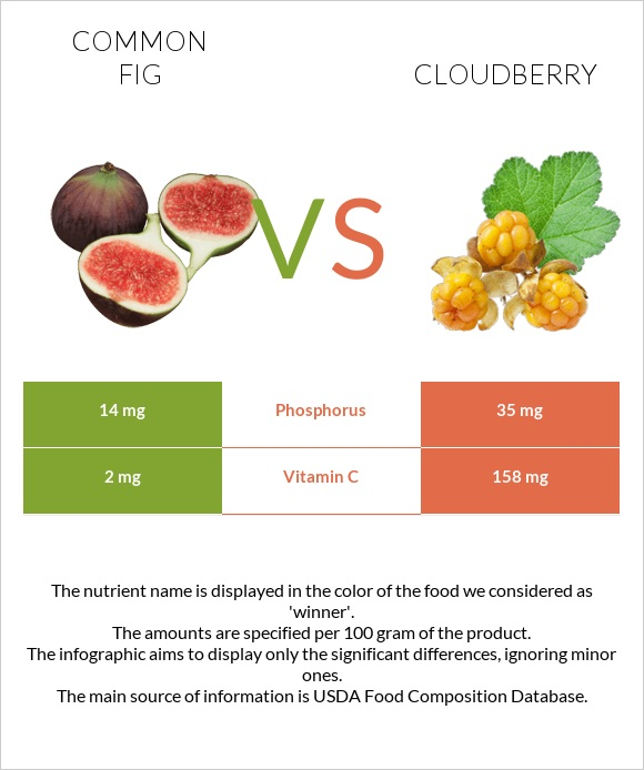 Common fig vs Cloudberry infographic