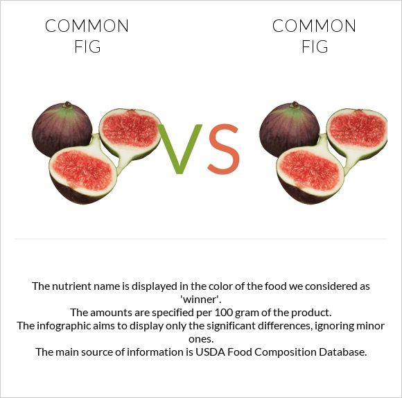 Common fig vs Common fig infographic
