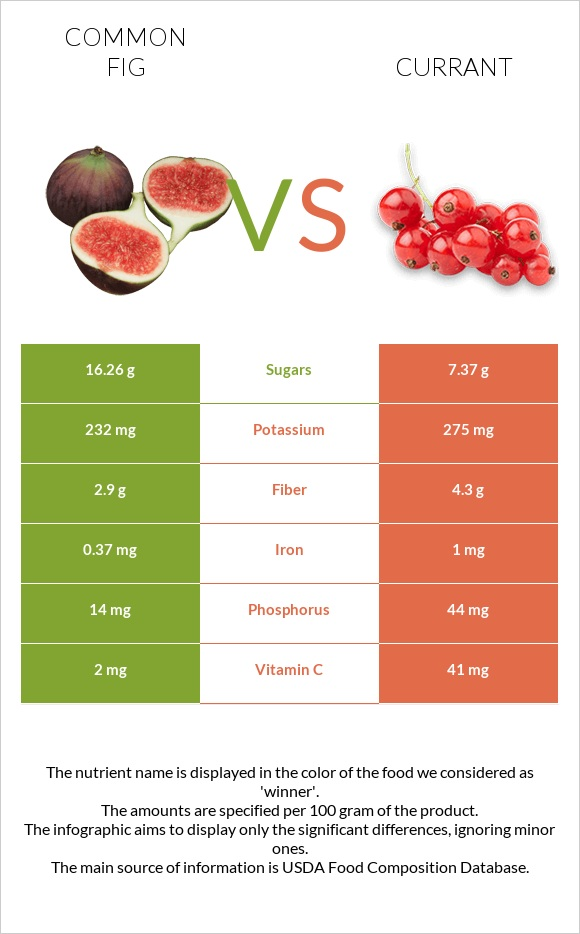 Common fig vs Currant infographic