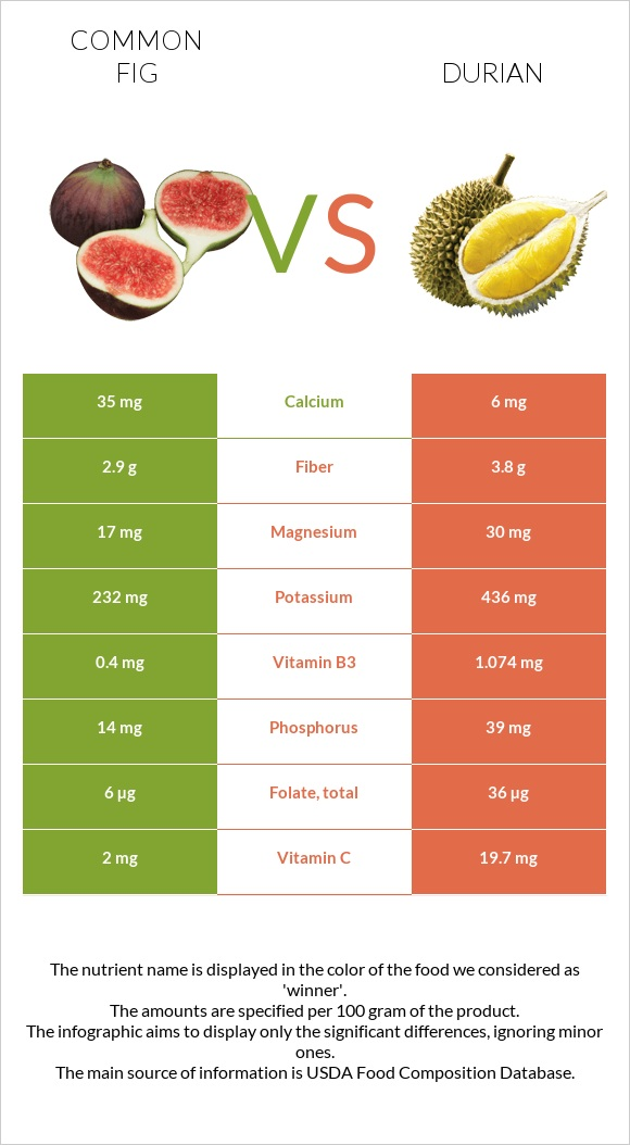 Common fig vs Durian infographic