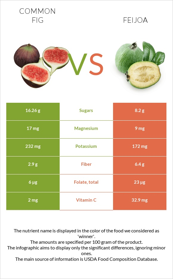 Common fig vs Feijoa infographic